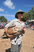 Saturday, September 6th 2014. The first Saturday in September each year is International Vulture Awareness Day. Israel Nature and Parks Authority staff educate the public and release tagged  Griffon vultures back to the wild at the Hai-Bar on mount Carmel