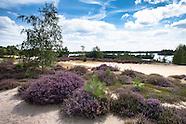 De Maasduinen Nationalpark, Netherlands