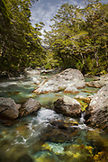 Scenic landscape with view of a stream with rocks in a forest, Routeburn Track, South Island, New Zealand