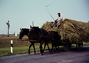 Man with whip riding horse and cart carrying hay in rural countryside area, Romania, eastern Europe 1967