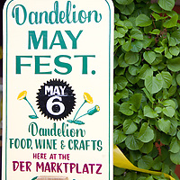 Dandelion May Fest is held at Breitenbach Wine Cellars in Dover, Ohio the first weekend of every May.