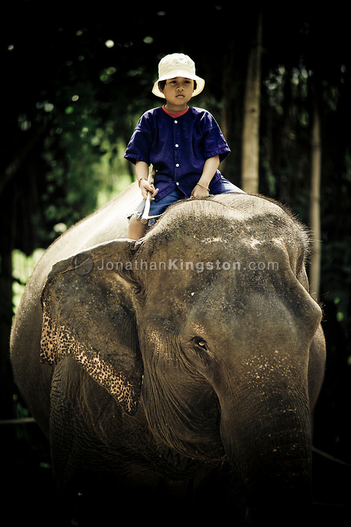 A young mahout on his elephant, Pattaya elephant village, Pattaya, Thailand.  The village was opened in 1973 as a sanctuary for former working elephants that can no longer be used for extended heavy work due to injury or ill health.  A popular tourist attraction, fee's paid by tourists support the upkeep of the elephants.