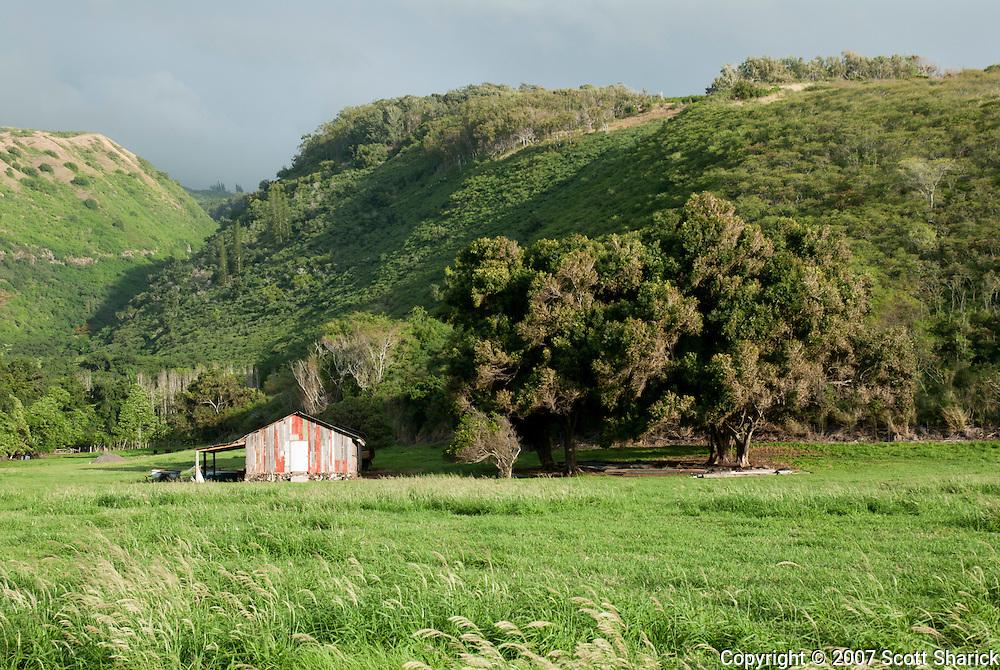 A barn on the island of Molokai, Hawaii.