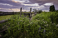 The fields near the cottage are alive with fresh growth after all the rains lately.  The vivid green fields contrast sharply against the dramatic cloudy skies.<br /> <br /> ©2009, Sean Phillips<br /> http://www.Sean-Phillips.com