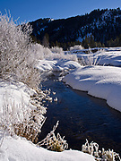 Hoarfrost on willows along the Big Wood River, Sawtooth National Recreation Area, Sawtooth National Forest, Idaho.
