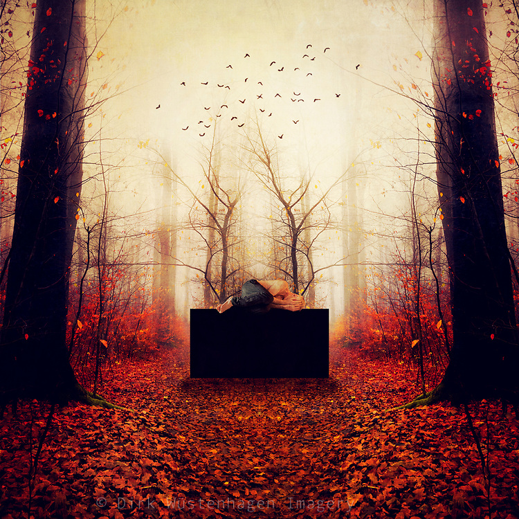 Surreal and moody forest scenery with a man lying on a black box - photomanipulation