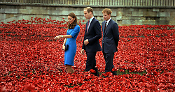 File photo dated 5/8/2014 of rhe Duke and Duchess of Cambridge accompanied by Prince Harry viewing the Tower of London's 'Blood Swept Lands and Seas of Red' poppy installation which commemorated the 100th anniversary of the outbreak of First World War.