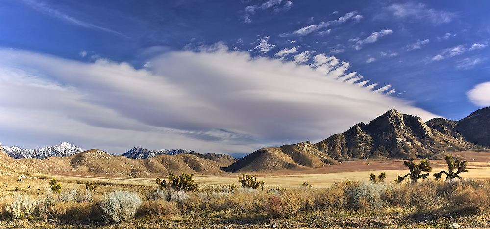 Lee Flat Joshua Trees: The finest stands of tree-sized yuccas in the park grow in this mountain-rimmed valley. Take the paved but rough Saline Valley Road to a junction in Lee Flat. The gravel roads in either direction will provide good views of Joshua trees.