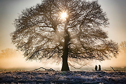 © Licensed to London News Pictures. 06/02/2020. London, UK. People walk at through a misty Bushy Park in south west London at first light. After a period of clear and cold days, rain and wind are forecast for the next few days as the UK feels the effects of Storm Ciara. Photo credit: Peter Macdiarmid/LNP