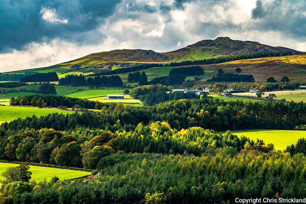 Glen Douglas, Jedburgh, Scottish Borders, UK. 4th Ocotber 2018. Wind blows afternoon light and shadows across an autumnal scene at Glen Douglas south of Jedburgh. Ruberslaw, a former Roman Signal Station, can be seen on the skyline.