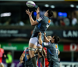 Seb Davies of Cardiff Blues claims the high ball<br /> <br /> Photographer Simon King/Replay Images<br /> <br /> European Rugby Challenge Cup Round 2 - Cardiff Blues v Leicester Tigers - Saturday 23rd November 2019 - Cardiff Arms Park - Cardiff<br /> <br /> World Copyright © Replay Images . All rights reserved. info@replayimages.co.uk - http://replayimages.co.uk
