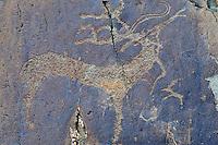 Mongolie, province de Bayan-Ulgii, région de l'ouest, Parc national de Tavan Bogd, site des petroglyphes dans les montagnes de l'Altai Mongol représentant des cerfs et des rennes // Mongolia, Bayan-Ulgii province, western Mongolia, National Parc of tavan Bogd, petroglyphes in the Mongolian Altai mountains depicting the deers and the reindeers