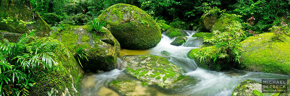 A beautiful clear rainforest stream courses through moss-covered boulders in this panoramic photograph.<br /> <br /> Open Edition Print and available as a Stock Image.