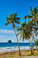 France, Martinique, la plage du Diamant // France, Martinique, Diamant beach