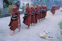 Myanmar (ex Birmanie), Province de Shan, Lac Inle, Moines au monastere Shweyanpyay // Myanmar (Burma), Shan province, Inle lake, Monks at the Shweyanpyay monastery