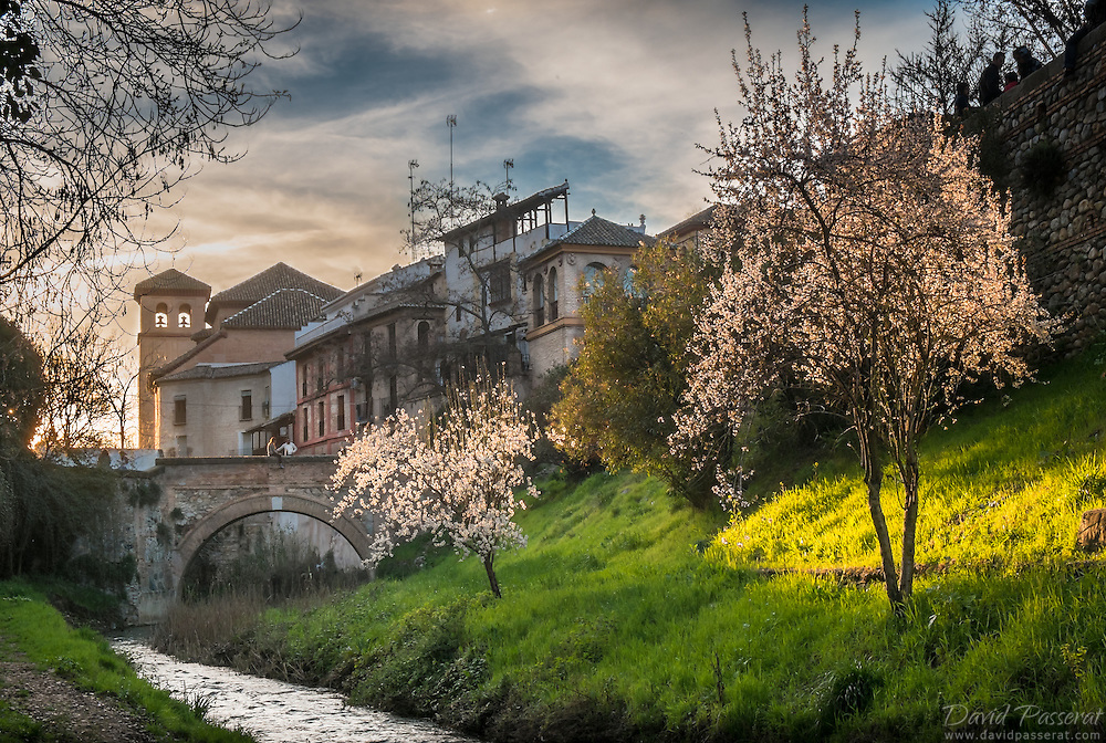 """View from below the """"Paseo de los tristes"""" road in Albaicin.<br /> The cherry trees start blooming. In the background, the church of """"San Pedro y San Pablo""""."""