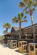 Hotel and palm trees by beach, Cadiz, Andalusia, Spain