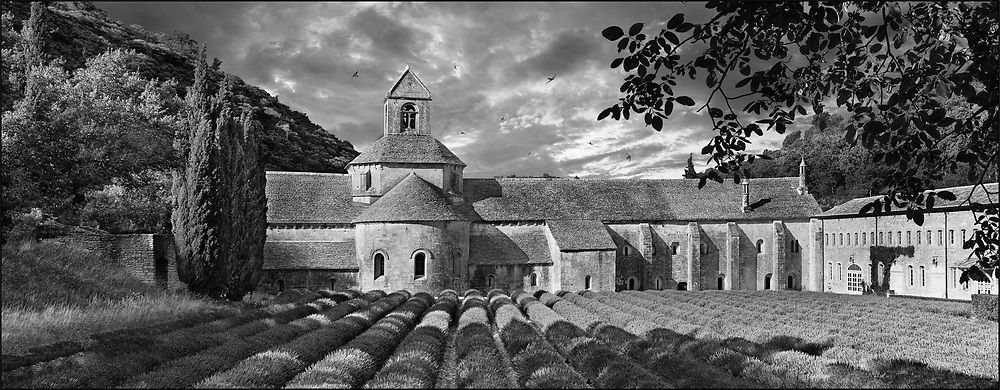 Sacred Stone - Black and white photo art print of the Abbey of Notre Dame of Senanque by Paul Williams. The 12th century Romanesque Cistercian Abbey of Notre Dame of Senanque ( 1148 ) set amongst the flowering lavender fields of Provence near Gordes, France. .<br /> <br /> Visit our LANDSCAPE PHOTO ART PRINT COLLECTIONS for more wall art photos to browse https://funkystock.photoshelter.com/gallery-collection/Places-Landscape-Photo-art-Prints-by-Photographer-Paul-Williams/C00001WetsxVxNTo