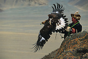 Golden Eagle being released by kazakh Hunter<br />