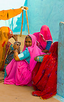 Women in Bishnoi tribal village, near Rohet, Rajasthan, India