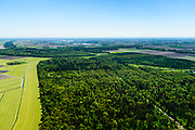 Nederland, Flevoland, Noordoostpolder, 07-05-2018; Kuinderbos, bij Kuinre.<br /> Aangeplant bos. <br /> Planted forest in new polder, North East Polder.<br /> <br /> luchtfoto (toeslag op standard tarieven);<br /> aerial photo (additional fee required);<br /> copyright foto/photo Siebe Swart