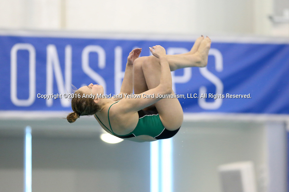 19 February 2016: Notre Dame's Anne Crea competes in the Women's 3 Meter Diving preliminaries. The 2016 Atlantic Coast Conference Swimming and Diving Championships were held at the Greensboro Aquatic Center in Greensboro, North Carolina from February 17-27, 2016.