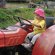 Pint-sized tractor driver, Ipswich, Massachusetts, New England, harvest time