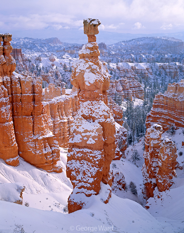 Thor's Hammer after Snowstorm, Bryce Canyon National Park, Utah