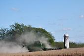 News: Soy Crop Harvesting-Oct 9, 2019