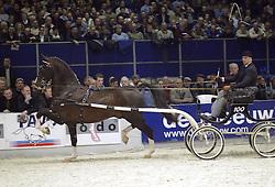 Manno<br />KWPN hengstenkeuring 2003<br />Photo © Dirk Caremans
