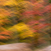 Wooded shoreline of Clear Fork Reservoir in autumn, captured with in-camera impressionistic blur.