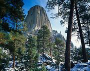 Ponderosa pines framing Devils Tower, Devils Tower National Monument, Wyoming.