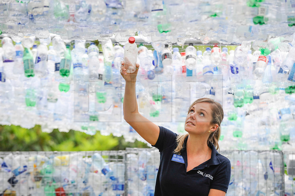 "© Licensed to London News Pictures. 24/05/2018. LONDON, UK. Fiona Llewellyn, ZSL's Marine Project manager, places the final bottle at the unveiling of an art installation called ""Space of Waste"" by architect Nick Wood, in ZSL London Zoo.  The artwork comprises a building made of 15,000 discarded single-use bottles collected from London and its waterways and is part of ZSL's #OneLess campaign, aiming to protect the world's oceans by encouraging people to stop using single-use plastic bottles.  Photo credit: Stephen Chung/LNP"