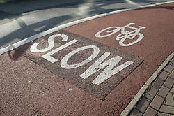 Cycle lane displaying Slow sign