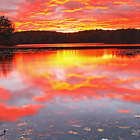 Wellesley Lake Waban sunset  showing a sky on fire with remaining fall foliage colors in the distant treeline. <br /> <br /> Wellesley Lake Waban sunset photography images are available as museum quality photography prints, canvas prints, acrylic prints or metal prints. Prints may be framed and matted to the individual liking and room decor needs:<br /> <br /> http://juergen-roth.pixels.com/featured/massachusetts-skyfire-juergen-roth.html<br /> <br /> Good light and happy photo making!<br /> <br /> My best,<br /> <br /> Juergen<br /> Image Licensing: http://www.RothGalleries.com<br /> Fine Art Prints: http://fineartamerica.com/profiles/juergen-roth.html<br /> Photo Blog: http://whereintheworldisjuergen.blogspot.com<br /> Twitter: https://twitter.com/naturefineart<br /> Facebook: https://www.facebook.com/naturefineart<br /> Instagram: https://www.instagram.com/rothgalleries