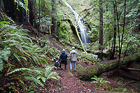 Chamberlin Creek waterfall is between Fort Bragg and Willits in Mendocino County.