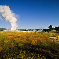 Steam rises from the mouth of Old Faithful geyser, Yellowstone National Park, Wyoming