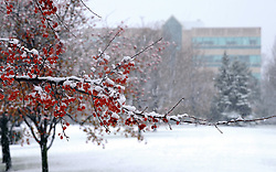 Indiana University South Bend in winter...Photo by Matt Cashore