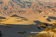 62945-00314 Sand Dunes in Death Valley Natl Park CA
