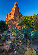 Caprock Canyons State Park and Trailway is a Texas state park on the Caprock Escarpment in Briscoe County, Texas, United States, approximately 100 miles (160 km) southeast of Amarillo. The state park opened in 1982 and is 15,313.6 acres (6,197.2 ha) in size, making it the third-largest state park in Texas.