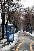 Bicycle lane in a park. Photographed in Bucharest, Romania in winter