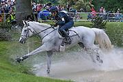 BOROUGH PENNYZ ridden by Vittoria Panizzon at Bramham International Horse Trials 2016 at  at Bramham Park, Bramham, United Kingdom on 11 June 2016. Photo by Mark P Doherty.