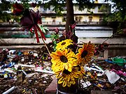 19 OCTOBER 2017 - BANGKOK, THAILAND: Artificial flowers in front of a former home site in Pom Mahakan slum in Bangkok. Most of the people living in the slum have been evicted, and the land they were living on has been turned into a volunteer center for people helping with the royal cremation, which is October 25-29, 2017. After the cremation the land will be turned into a public park.     PHOTO BY JACK KURTZ