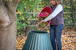 Empting shredded material into a compost bin.