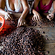 The roasted beans are winnowed and sorted before being used to make chocolate. Tapachula, Mexico.