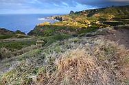 Maui Coast, Hawaii