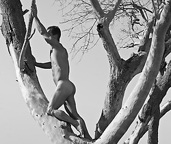 nude man surrounded by tree branches by the ocean in South Carolina