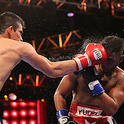 WINTER PARK, FL - AUGUST 02:  Jorge Cota of Sinaloa, Mexico (L) lands a right hand to the face of Yudel Jhonson of Havan, Cuba, during the Premier Boxing Champions on Bounce TV boxing match at Full Sail University - Ebbs Auditorium on August 2, 2015 in Winter Park, Florida. Cota won the bout by unanimous decision. (Photo by Alex Menendez/Getty Images) *** Local Caption *** Yudel Jhonson; Jorge Cota