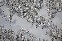 Snowy scenic of ski resort near Lake Tahoe, CA.