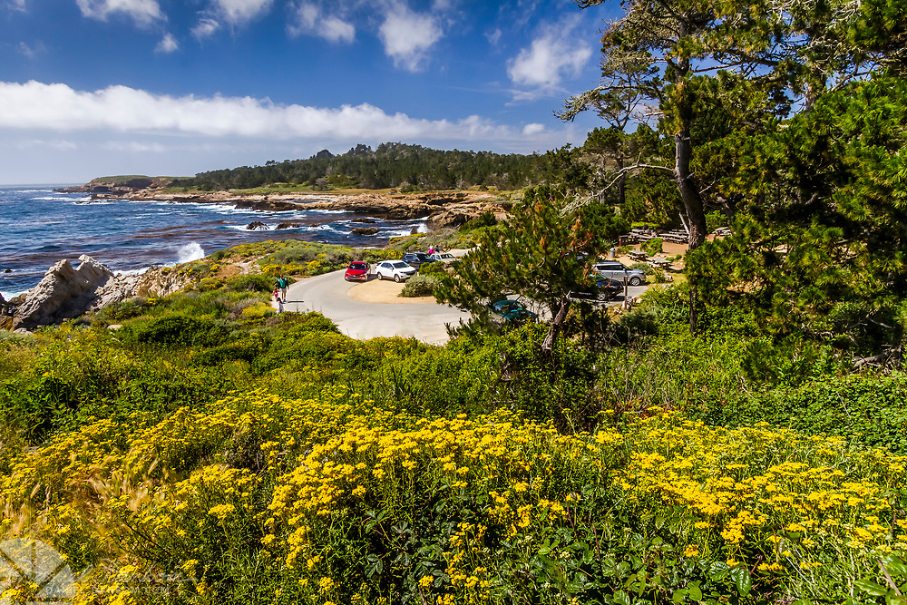 Point Lobos State Reserve, the Bird Rock parking area looking north, near Carmel, California